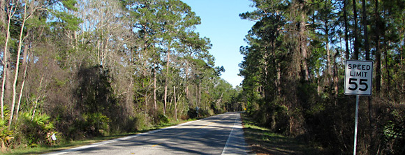 Ocala National Forest, FL