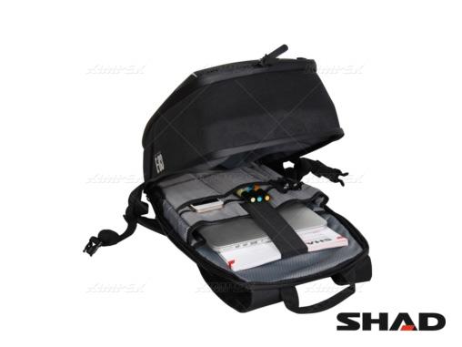 shad_02